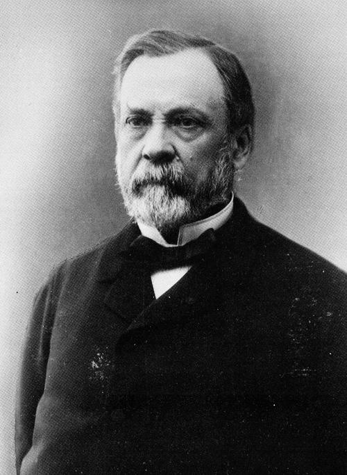 Louis Pasteur 1822 1895 Ens
